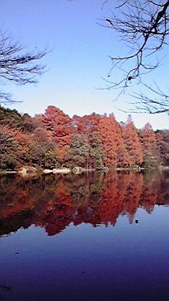 石神井公園〜♪